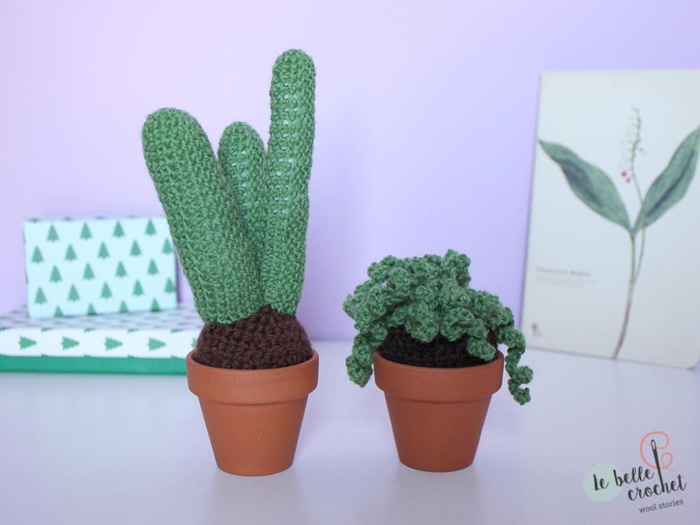 03_cactus_lebellecrochet