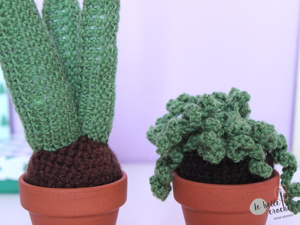 04_cactus_lebellecrochet