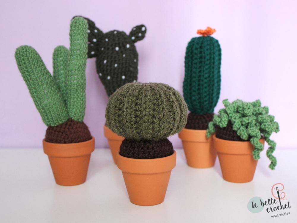 cactus_amigurumi_04