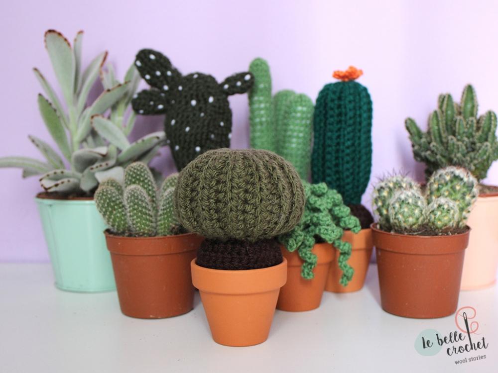 cactus_amigurumi_05